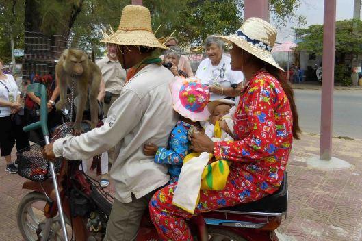 160311-033 CambodiaSihanoukvilleMonkeyWorking